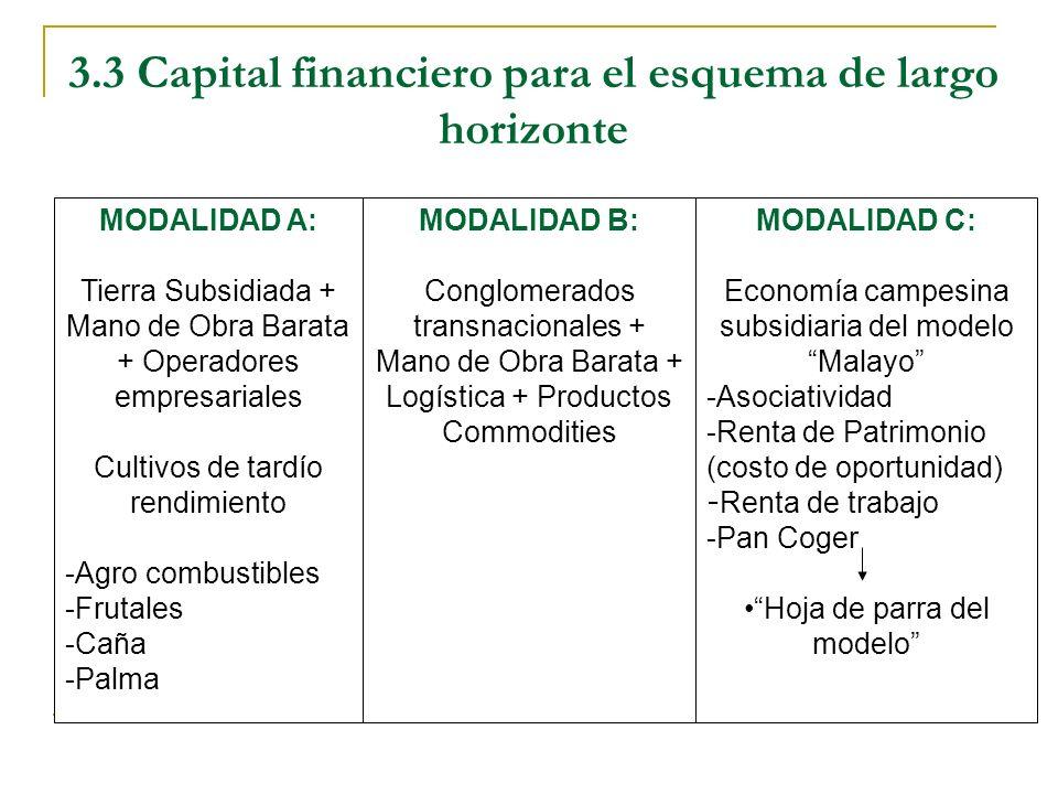 3.3 Capital financiero para el esquema de largo horizonte