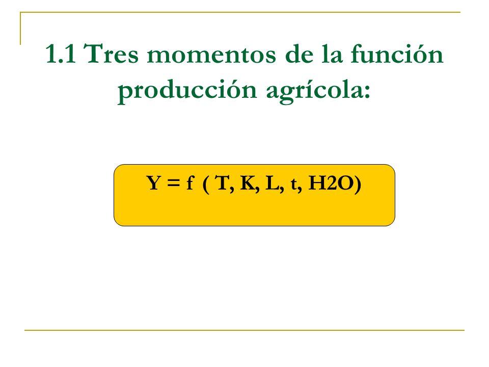 1.1 Tres momentos de la función producción agrícola:
