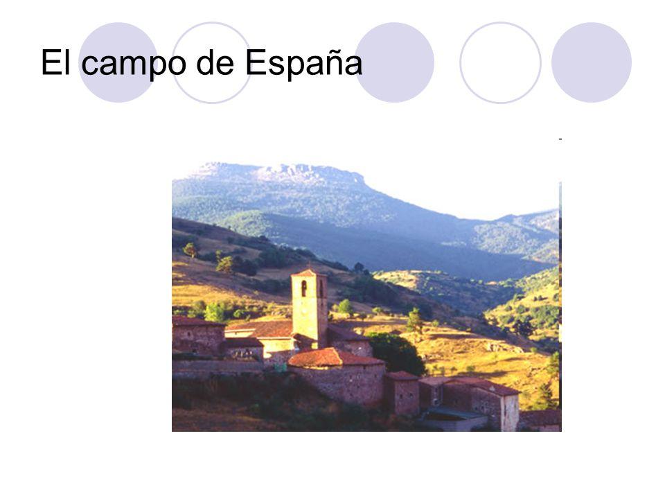 El campo de España