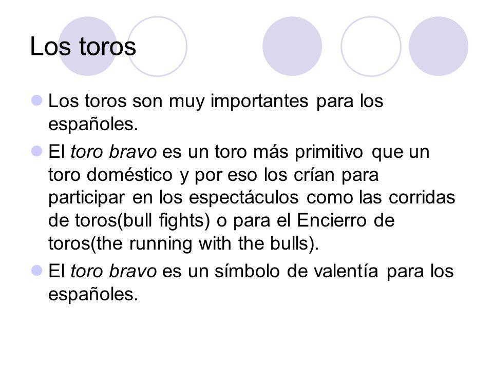 Los toros Los toros son muy importantes para los españoles.