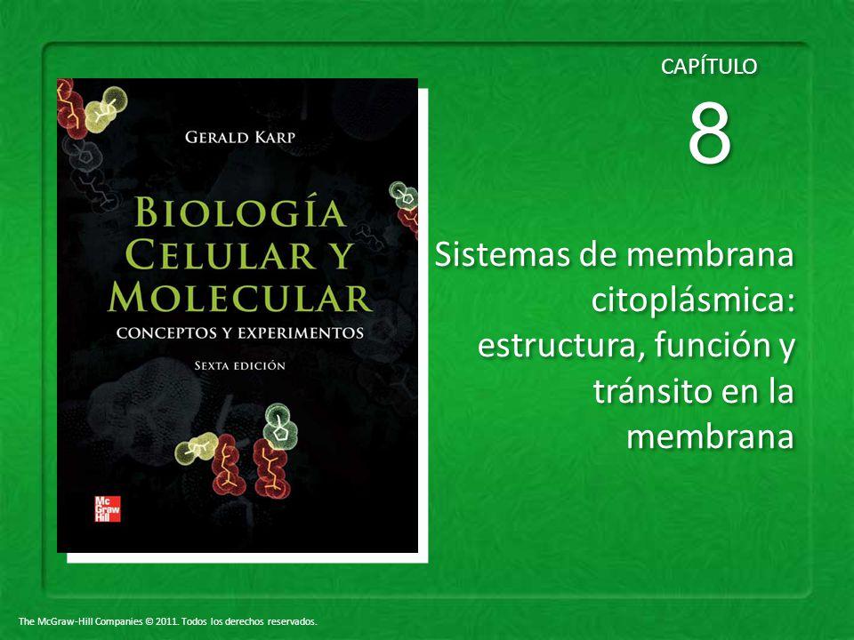 CAPÍTULO 8 Sistemas de membrana citoplásmica: estructura, función y tránsito en la membrana