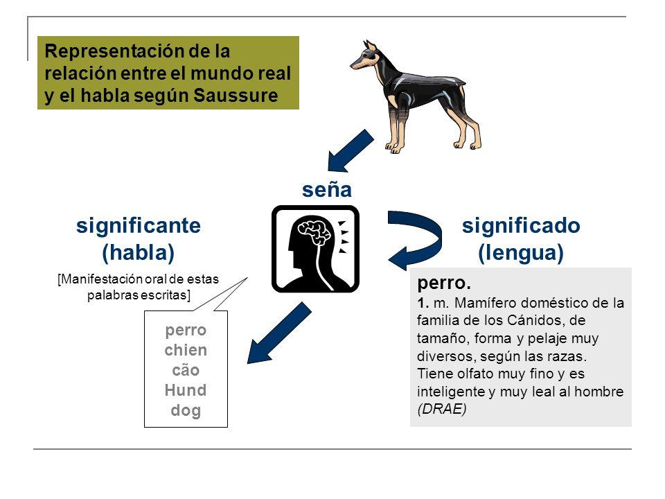 perro chien cão Hund dog