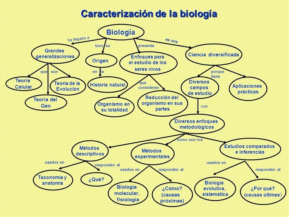 Caracterización de la biología Ciencia diversificada