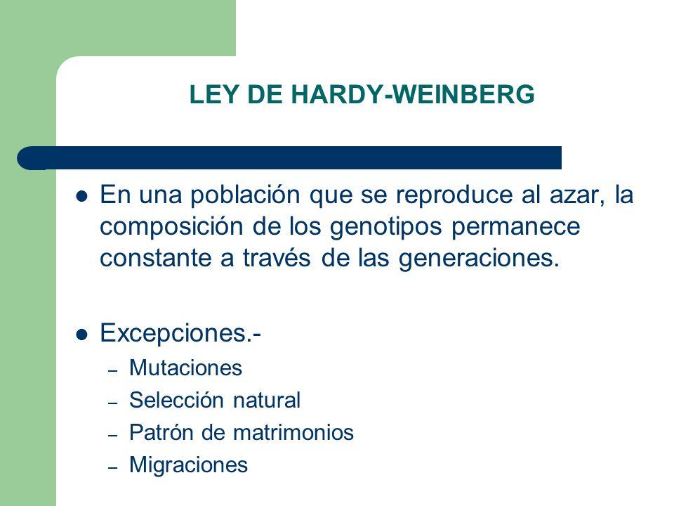 LEY DE HARDY-WEINBERG En una población que se reproduce al azar, la composición de los genotipos permanece constante a través de las generaciones.