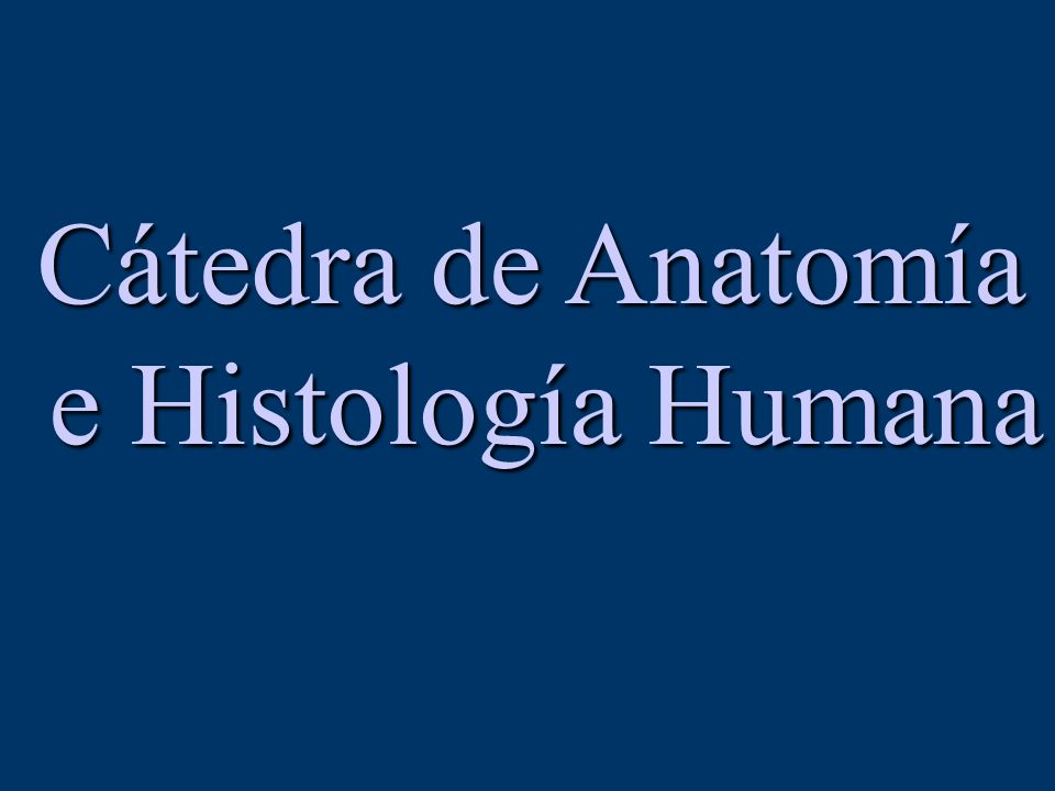 Cátedra de Anatomía e Histología Humana