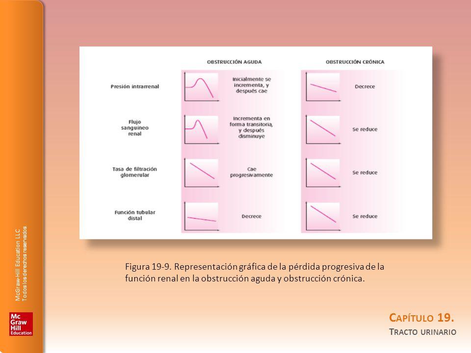Figura 19-9.