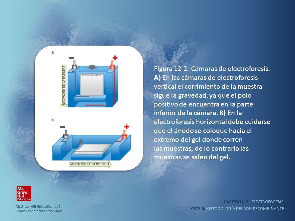 las muestras, de lo contrario las muestras se salen del gel.