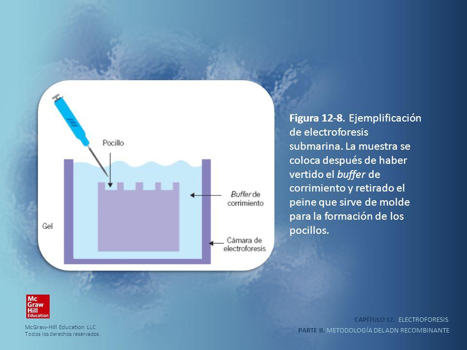 Figura 12-8. Ejemplificación de electroforesis submarina