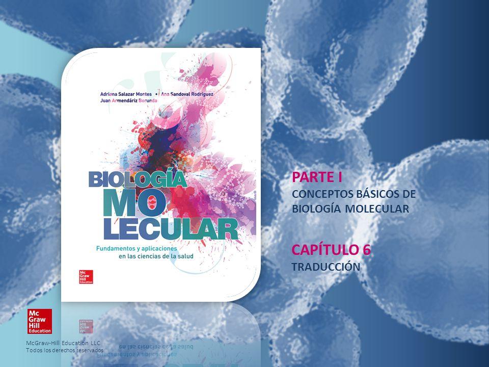 PARTE I CAPÍTULO 6 CONCEPTOS BÁSICOS DE BIOLOGÍA MOLECULAR TRADUCCIÓN