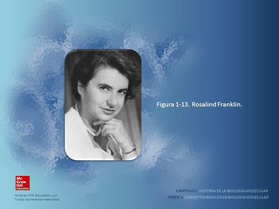 Figura 1-13. Rosalind Franklin.