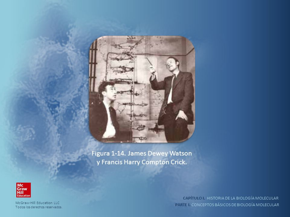 Figura 1-14. James Dewey Watson y Francis Harry Compton Crick.