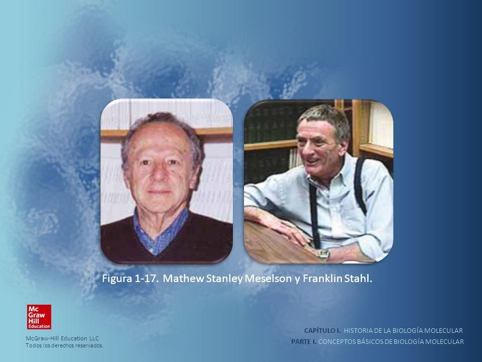 Figura 1-17. Mathew Stanley Meselson y Franklin Stahl.
