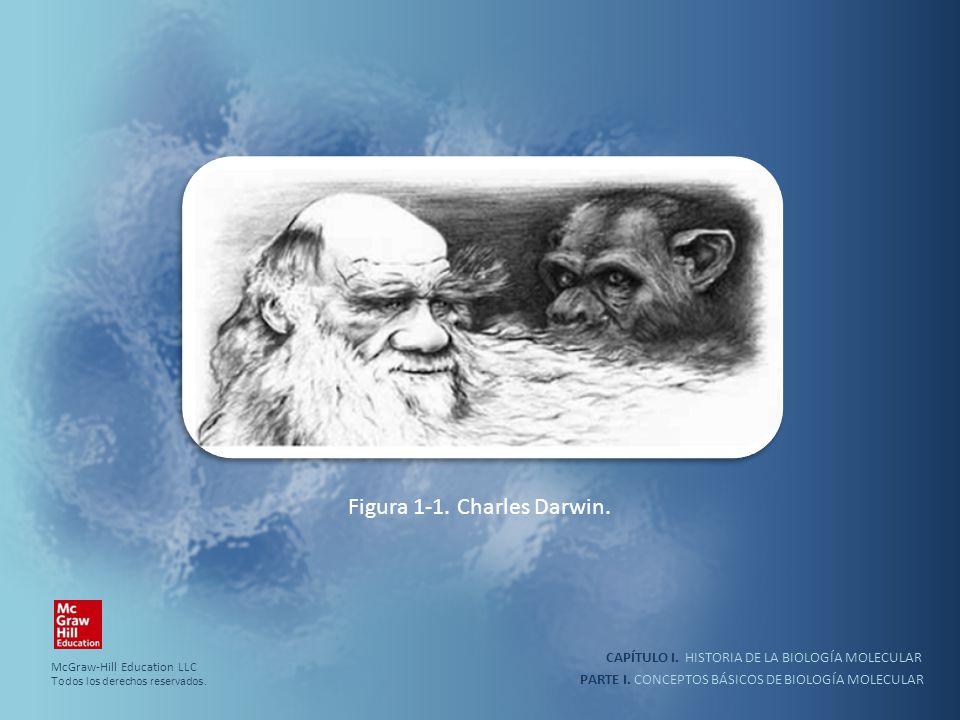 Figura 1-1. Charles Darwin.