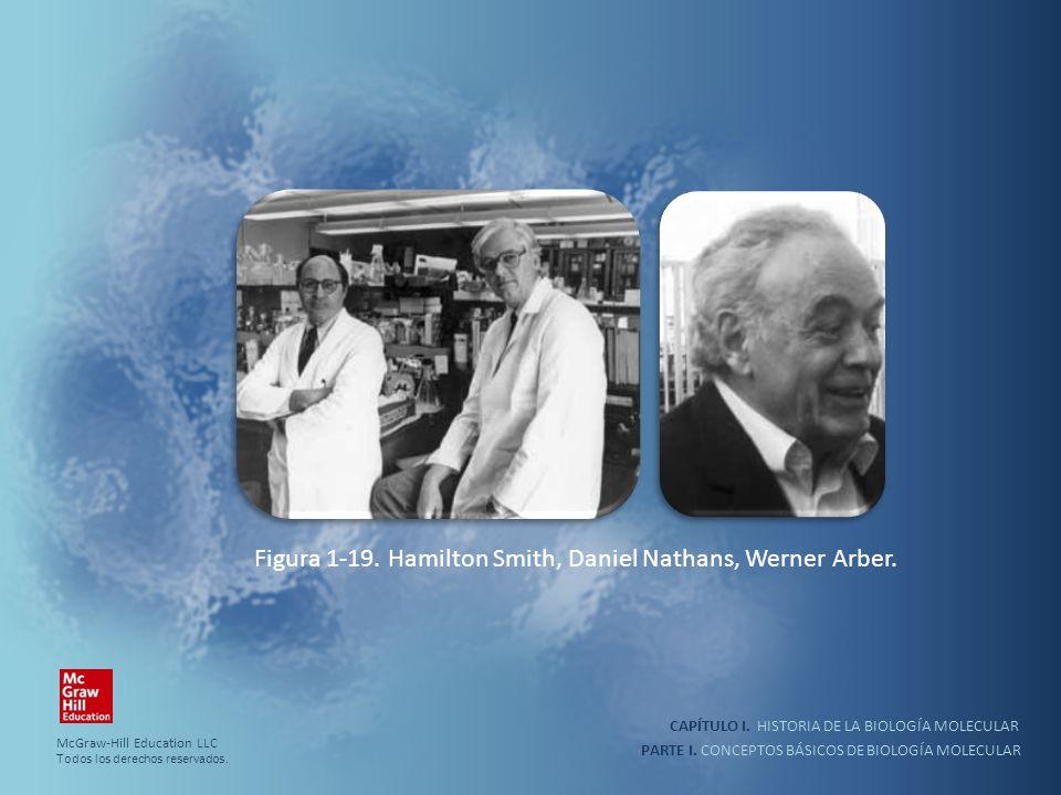 Figura 1-19. Hamilton Smith, Daniel Nathans, Werner Arber.
