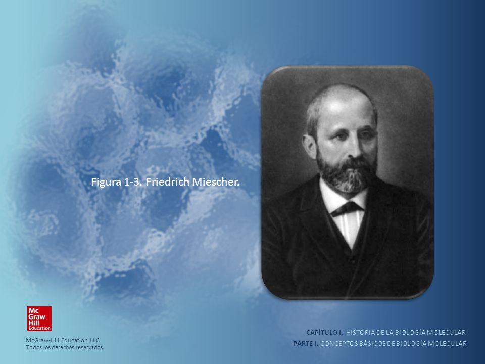 Figura 1-3. Friedrich Miescher.