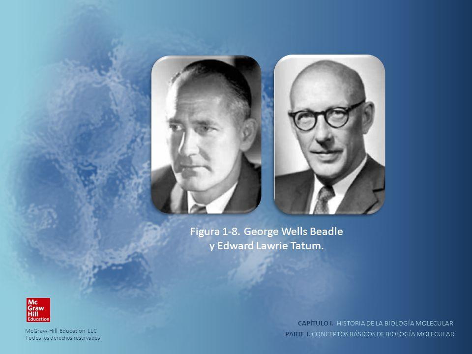 Figura 1-8. George Wells Beadle y Edward Lawrie Tatum.