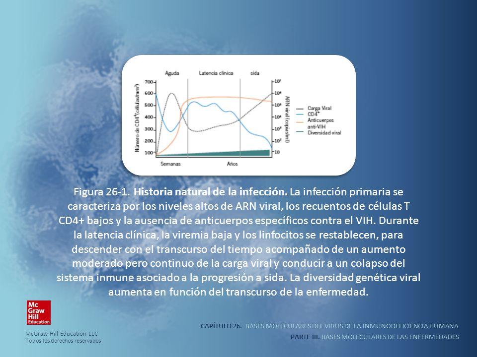 Figura 26-1. Historia natural de la infección