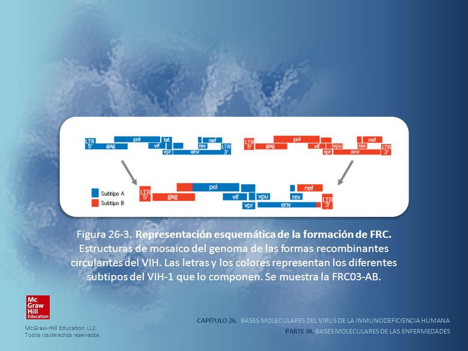 Figura 26-3. Representación esquemática de la formación de FRC
