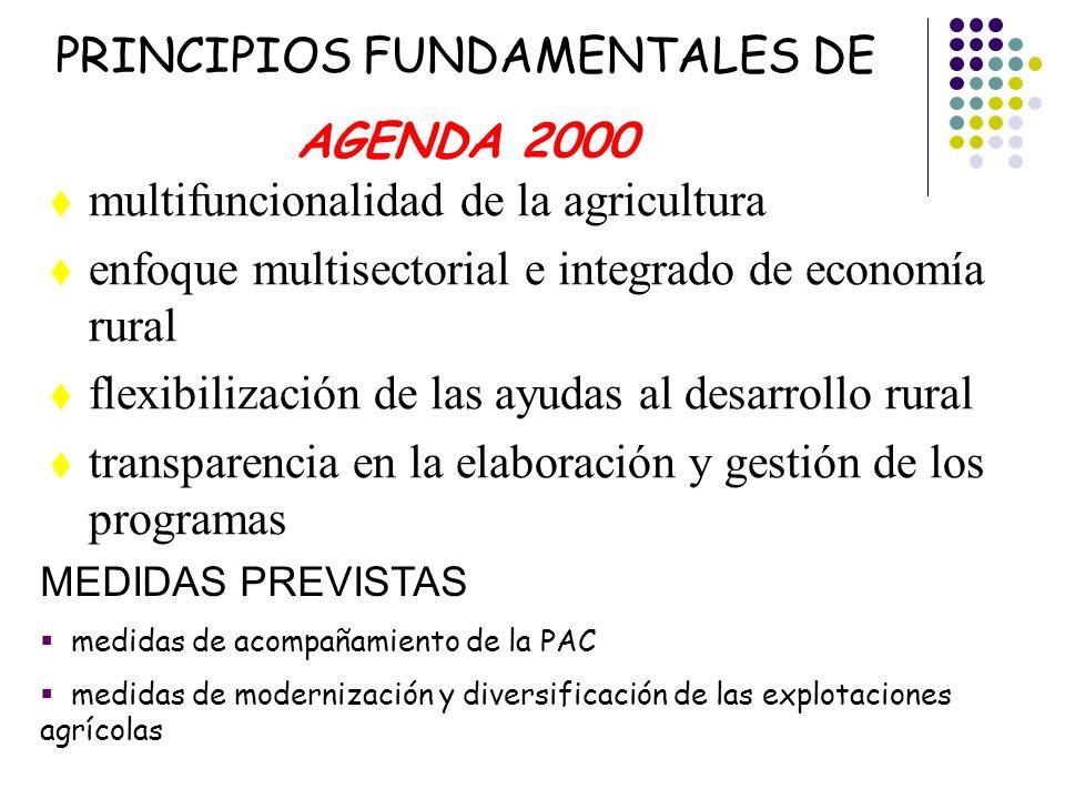 PRINCIPIOS FUNDAMENTALES DE