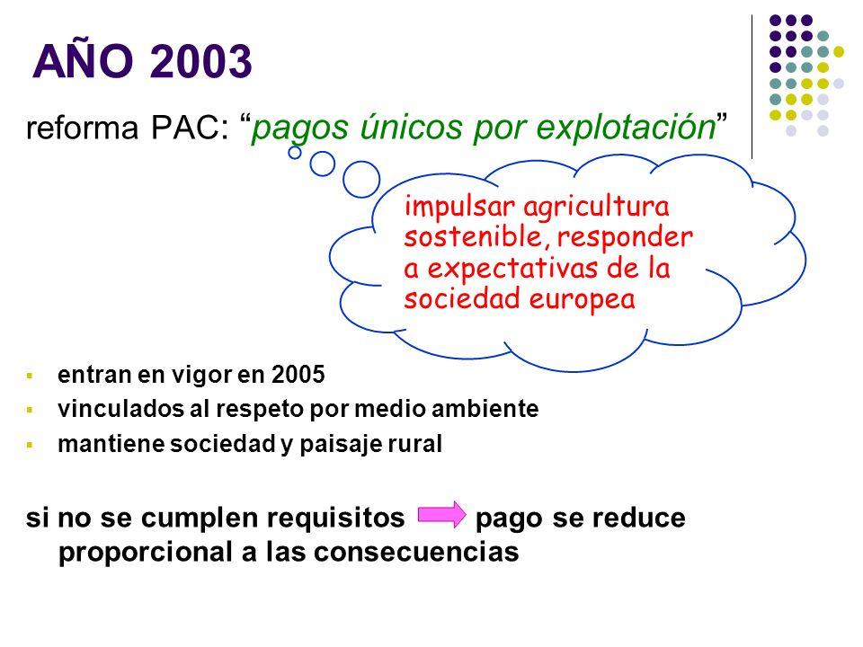AÑO 2003 reforma PAC: pagos únicos por explotación