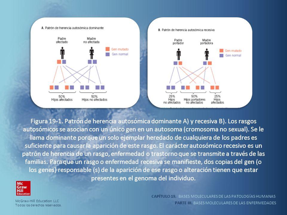 Figura 19-1. Patrón de herencia autosómica dominante A) y recesiva B)