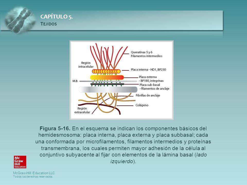 Figura 5-16.
