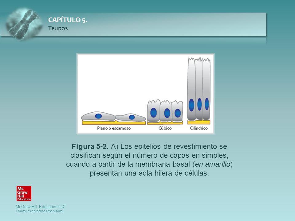 Figura 5-2.