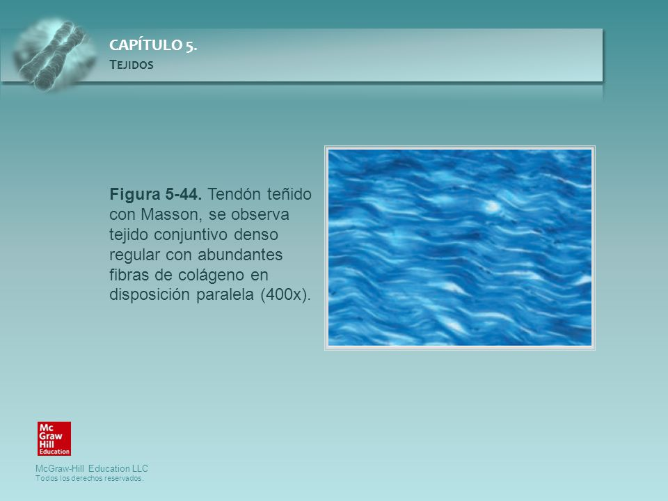Figura 5-44.