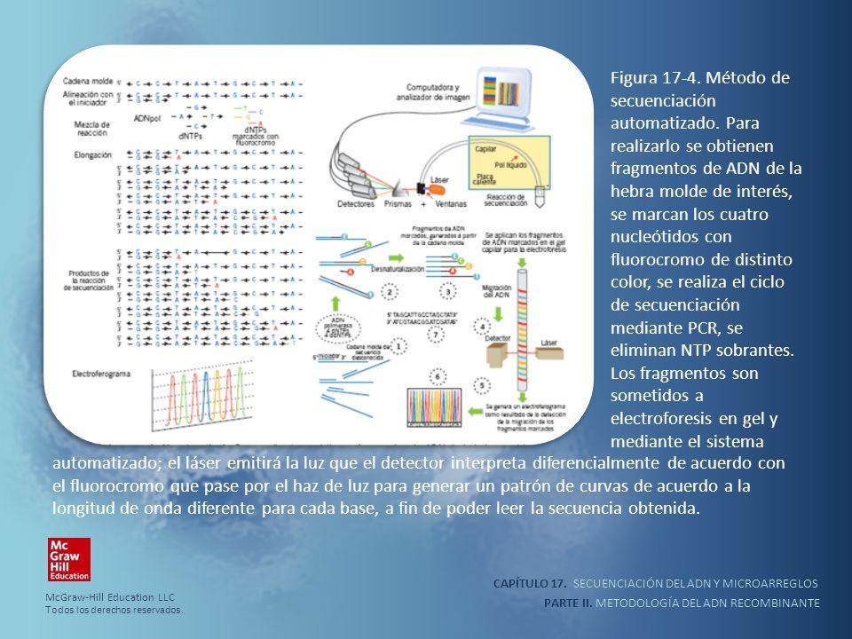 Figura 17-4. Método de secuenciación automatizado