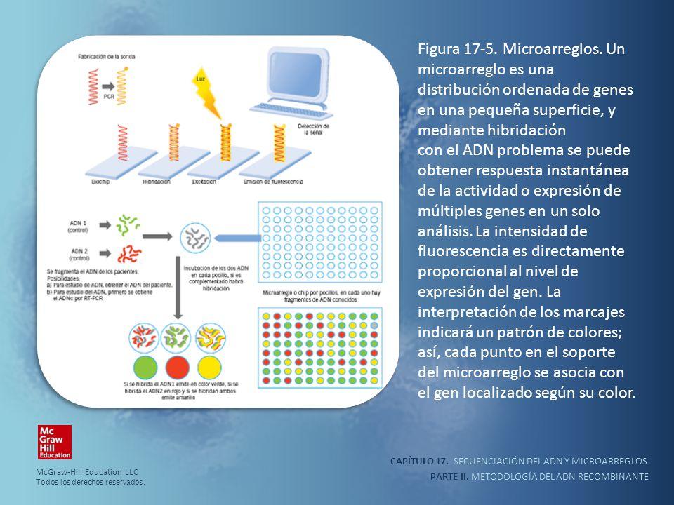 Figura 17-5. Microarreglos
