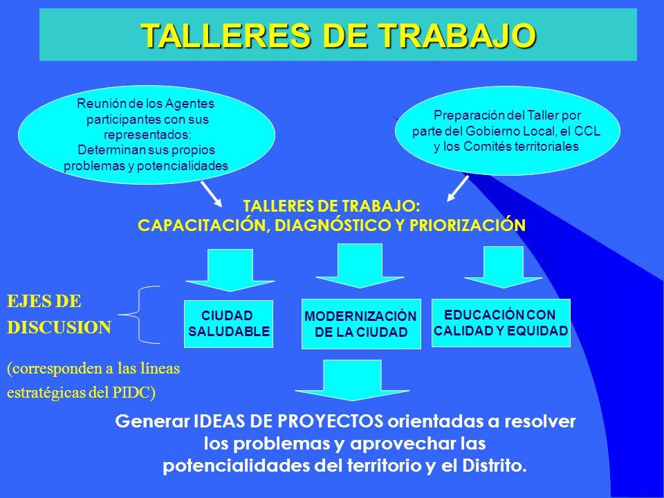 TALLERES DE TRABAJO EJES DE DISCUSION