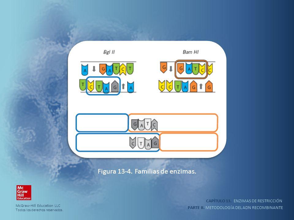 Figura 13-4. Familias de enzimas.