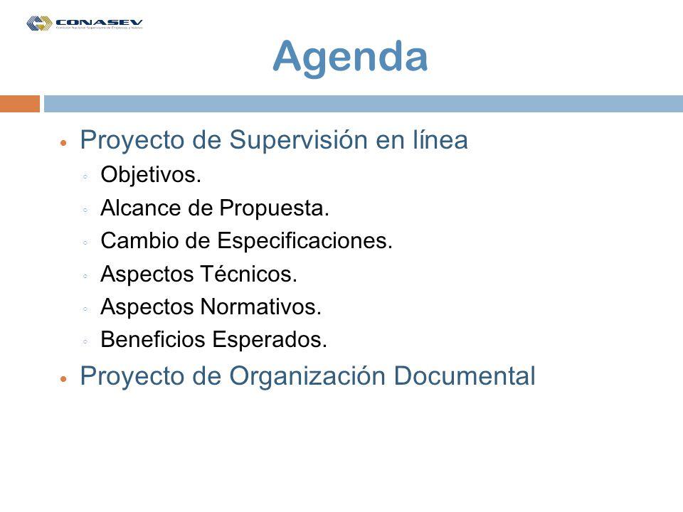 Agenda Proyecto de Supervisión en línea