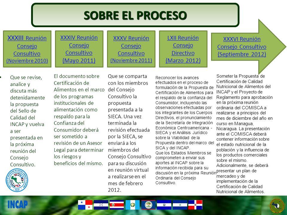 SOBRE EL PROCESO XXXIII Reunión Consejo Consultivo (Noviembre 2010)