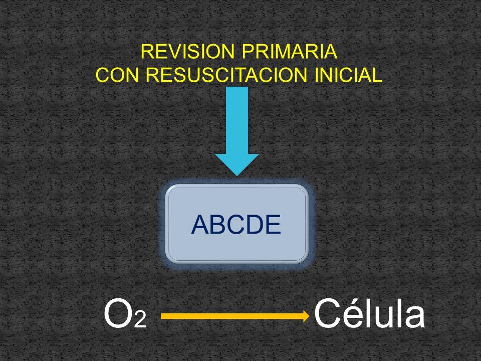 REVISION PRIMARIA CON RESUSCITACION INICIAL