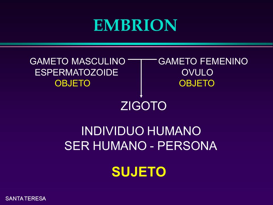 EMBRION SUJETO ZIGOTO INDIVIDUO HUMANO SER HUMANO - PERSONA