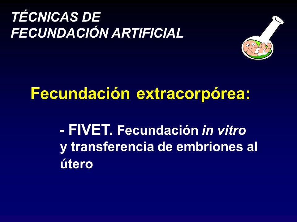 Fecundación extracorpórea: