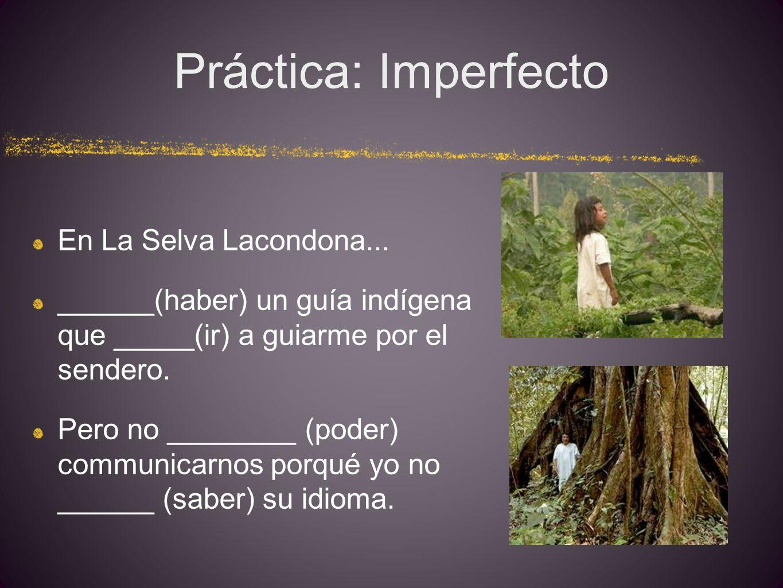 Práctica: Imperfecto En La Selva Lacondona...