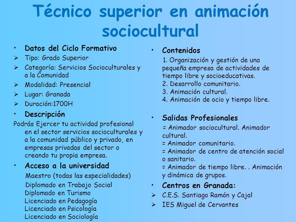 Técnico superior en animación sociocultural