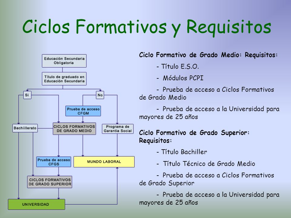 Ciclos Formativos y Requisitos