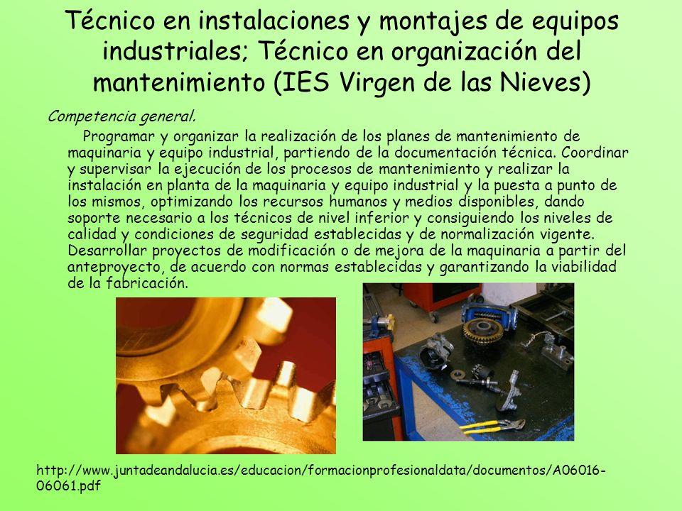 Técnico en instalaciones y montajes de equipos industriales; Técnico en organización del mantenimiento (IES Virgen de las Nieves)