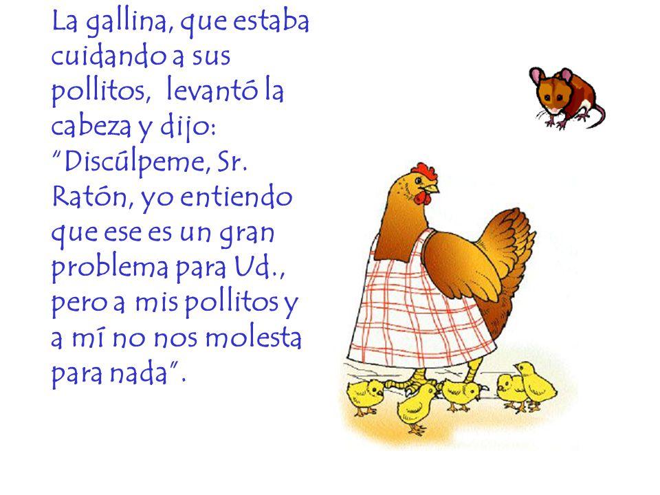 La gallina, que estaba cuidando a sus pollitos, levantó la cabeza y dijo: Discúlpeme, Sr.