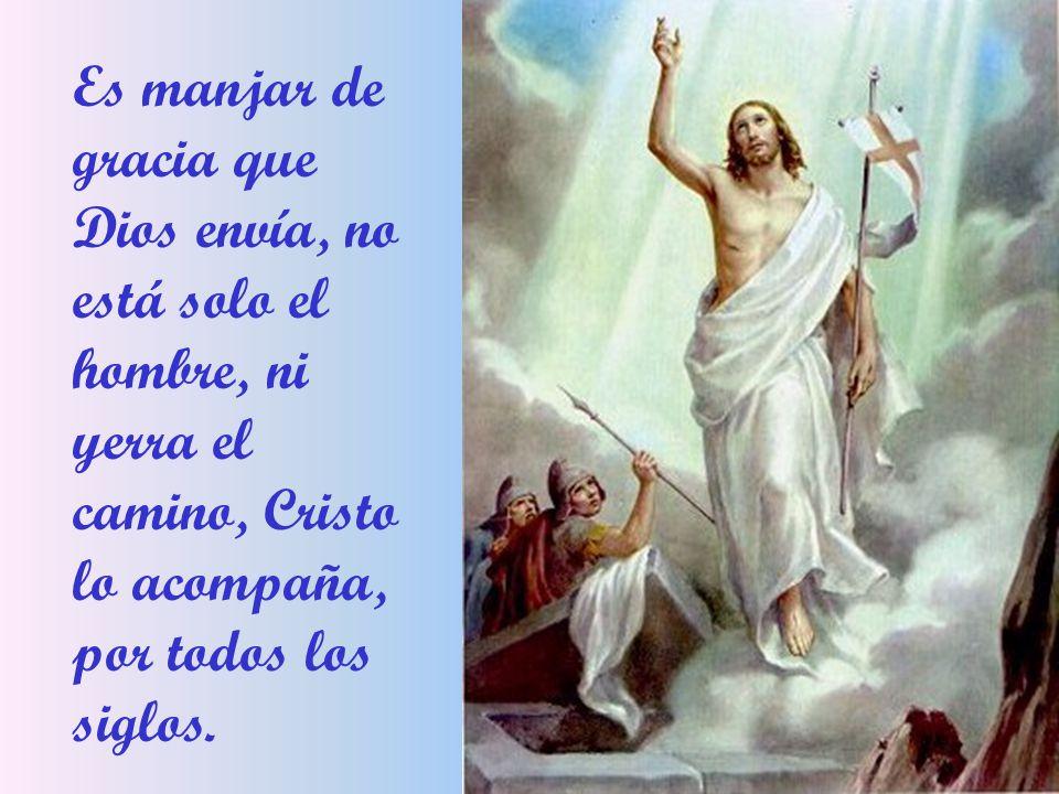 Es manjar de gracia que Dios envía, no está solo el hombre, ni yerra el camino, Cristo lo acompaña, por todos los siglos.