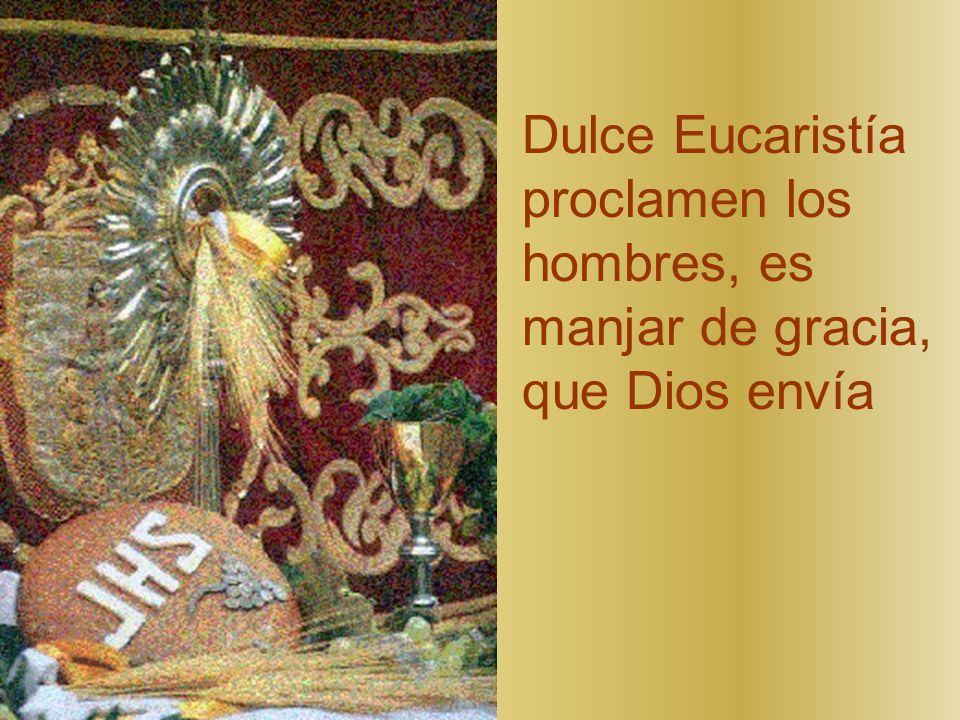 Dulce Eucaristía proclamen los hombres, es manjar de gracia, que Dios envía