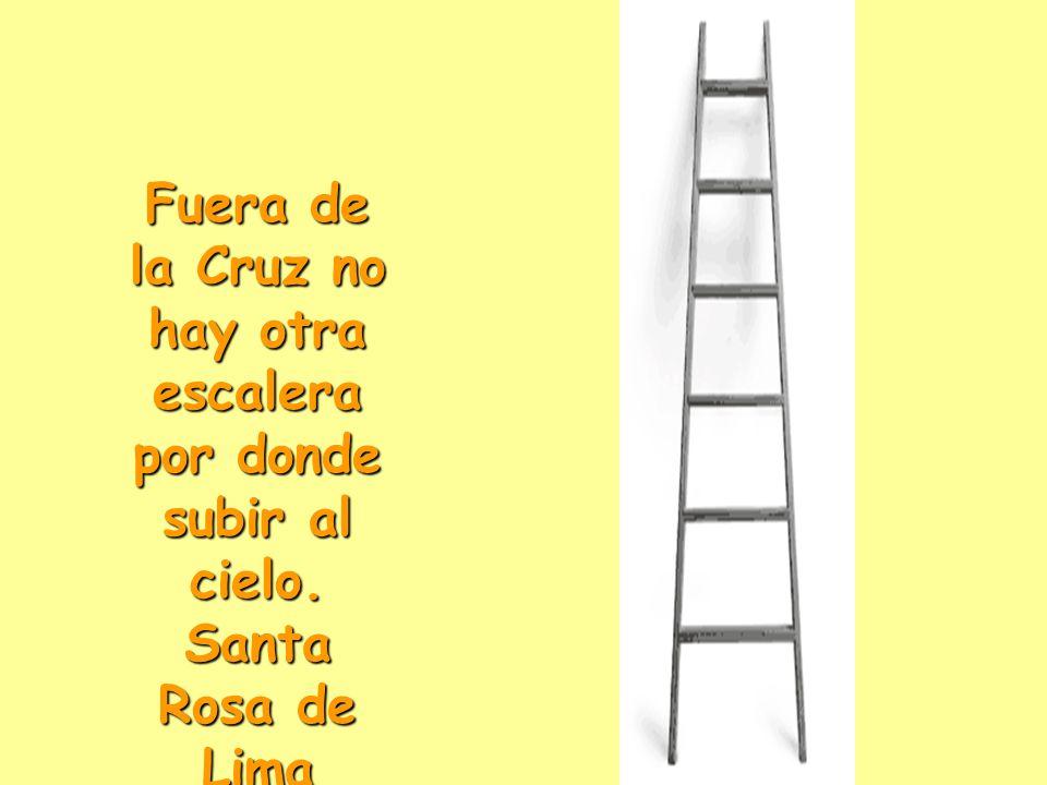 Fuera de la Cruz no hay otra escalera por donde subir al cielo