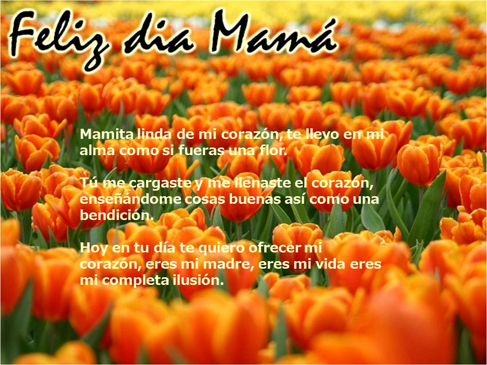 Mamita linda de mi corazón, te llevo en mi alma como si fueras una flor.