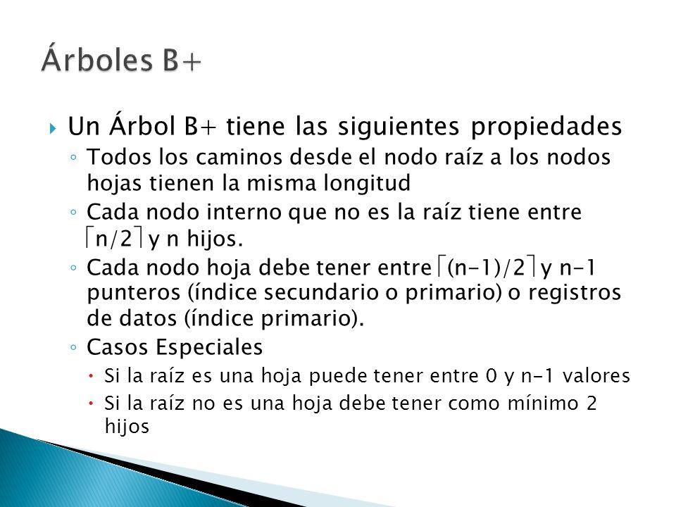 Árboles B+ Un Árbol B+ tiene las siguientes propiedades