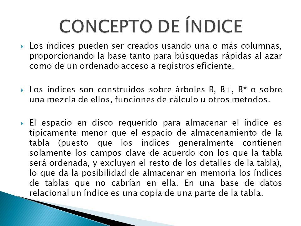 CONCEPTO DE ÍNDICE