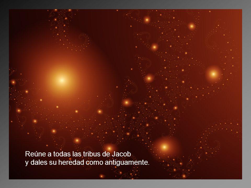 Reúne a todas las tribus de Jacob