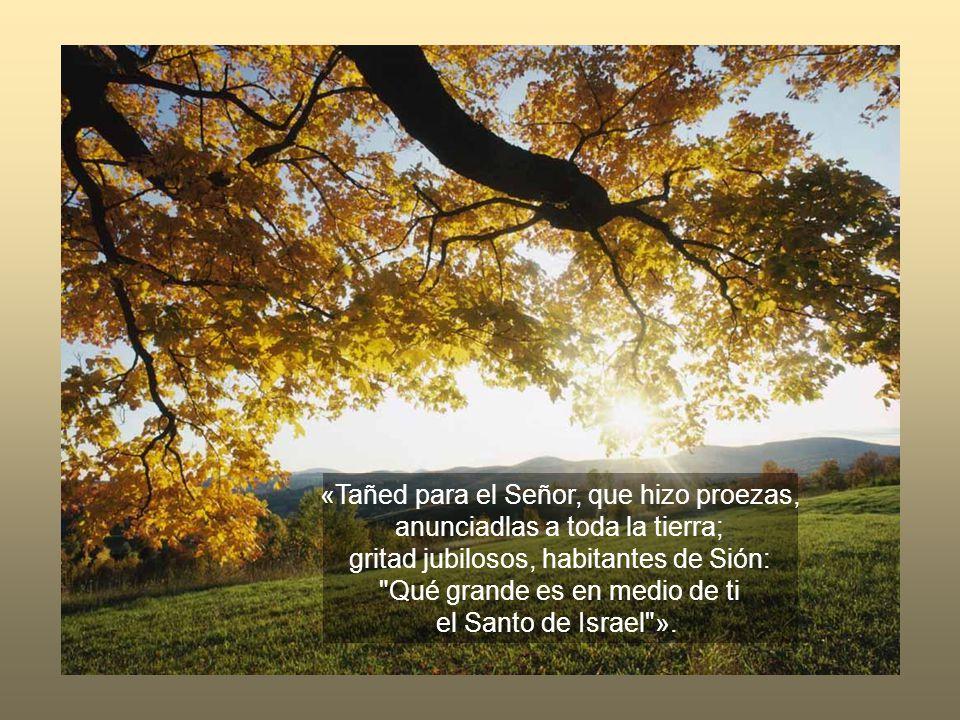 «Tañed para el Señor, que hizo proezas, anunciadlas a toda la tierra;